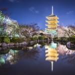 京都府のライトアップが美しい夜桜スポットまとめ