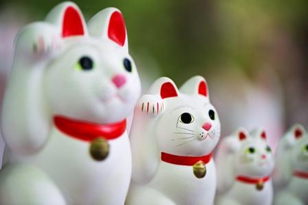 招き猫、幸運のネコ